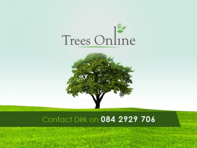 Trees Online Horticultural Services